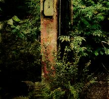 Forgotten Fuel Pump by Alan E Taylor