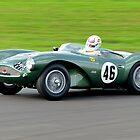 Aston Martin DB 3S No 46 by Willie Jackson