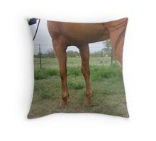 Showings On Not Easy Throw Pillow