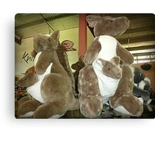 Kangaroos & Joeys Creswick Knitting Mills - Vic. Canvas Print
