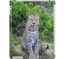 Leopard in South Africa iPad Case/Skin