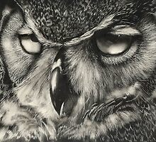Owl by Bill Dykes