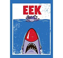 EEK Photographic Print