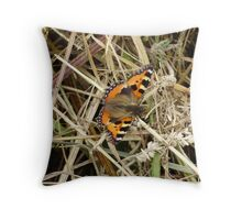 aglais urtica-small tortoise shell Throw Pillow