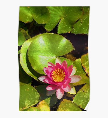 Pretty in Pink - a Waterlily Impression - Vertical Poster