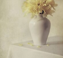 Daffodils in white flower pot by JBlaminsky