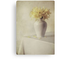 Daffodils in white flower pot Canvas Print