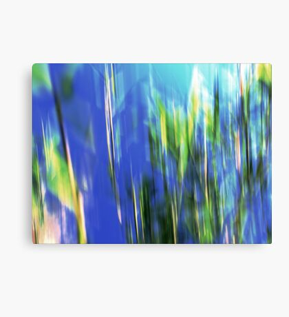 'Froid Spear' Canvas Print