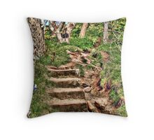 path of enlightment Throw Pillow