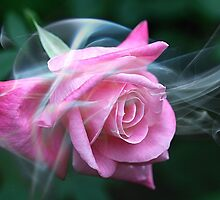 Smokin' Rose by Monnie Ryan