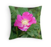 """A Wild Pink Rose"" Throw Pillow"