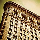 Cracked Flat Iron by HouseofSixCats
