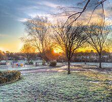 Harrowlodge Park HDR 03 by Peter Barrett