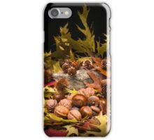 Autumnal still life composition iPhone Case/Skin