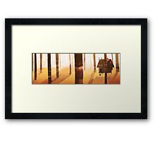 forest cabin Framed Print
