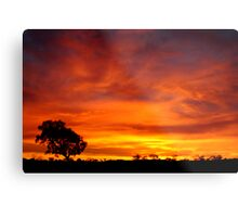 Sunrise, Batton Hill,Simpson Desert,N.T.  Metal Print