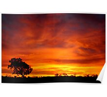 Sunrise, Batton Hill,Simpson Desert,N.T.  Poster