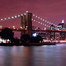 Night filled New York by ScottL