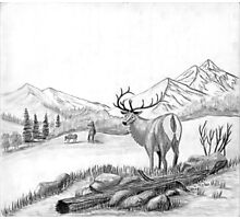 Elk - Charcoal Photographic Print