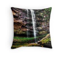 Stahle Falls Throw Pillow