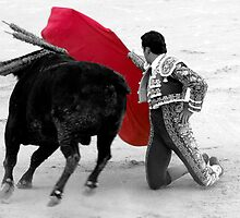 Matador and Bull. 1 by craigto