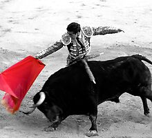 Matador and Bull. 3 by craigto