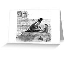 Seals - Charcoal Greeting Card