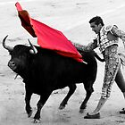 Matador and Bull. 5 by craigto