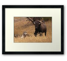 Not Far Enough! Framed Print
