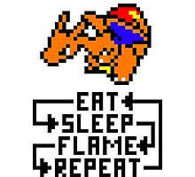 Charizard used Flame Wheel Photographic Print