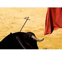 Bull, Sword and Muleta. Photographic Print
