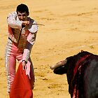 The Matador by craigto