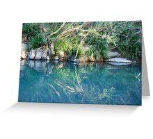 Mirrored Image of Dingo Creek  Greeting Card