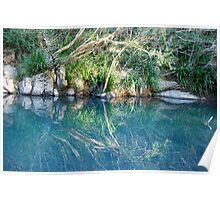 Mirrored Image of Dingo Creek  Poster