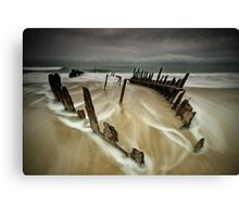 Stormy Dickie Canvas Print