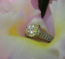 Diamonds & Orchids by Kuulei2you
