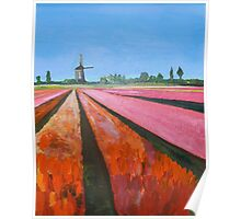 Holland, Tulip Fields Poster