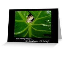 I Spy Birthday Frog Greeting Card