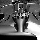 Violin B&W by MaddyPaddy
