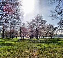 Hyde Park by Alexandra Strömgren
