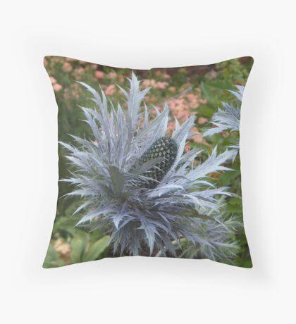 Eryngium bourgati Throw Pillow