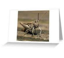 Wooden Hopper Greeting Card