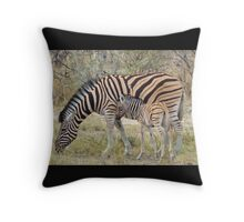 Zebra - African Wildlife - Paired up for Life Throw Pillow
