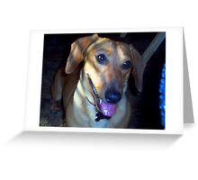 Portrait Of Buddy Greeting Card
