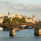 view of Paris from Seine River by chord0