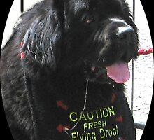 Fresh Flying Drool by gothgirl