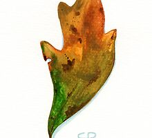 Scrub Oak in Fall by Cleave