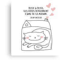 Les chats... l'âme de la maison / Cat Doodle Canvas Print