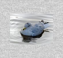 Gull Fluffed Up Against The Cold...................... Hoodie