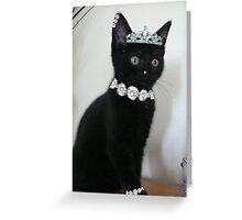 Pimp My Cat ~ ftloccontest1 Greeting Card